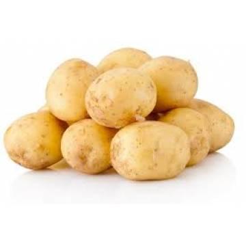 Kentang (Potato) 4kg