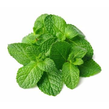 Mint Leaf 250g